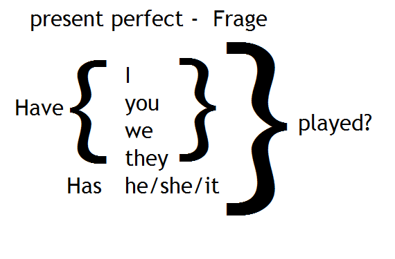 present perfect Frage